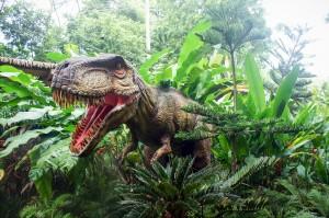 singapore-zoo-2164309_960_720