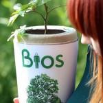 Hamvainkból fát növesztünk, avagy élet a halál után